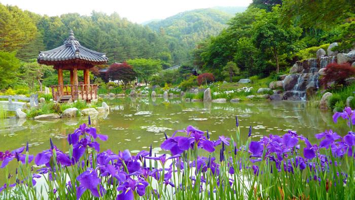 Косметика phy-mongShe Корея, природная косметика страны утренней свежести!
