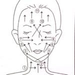 Глубокими массажными движениями нанесите маску на лицо и шею по схеме (рис. Схема)